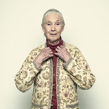 In conversation with... Jane Goodall